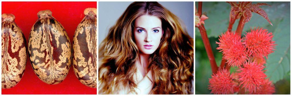 Castor oil in hair care