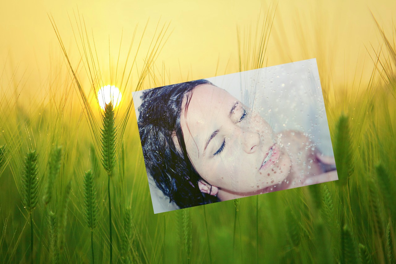 Sunrise on a barley field and a wet-haired woman's face.