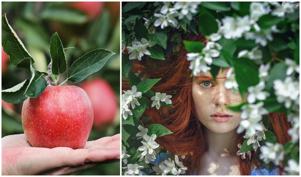 Your Beauty Hair about apple cider vinegar